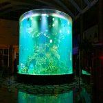 Chiny niestandardowe tanie super duże okrągłe szklane akwaria pmma jasne akwarium akrylowe akwaria