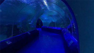 Płyty akrylowe o 180 lub 90 stopniach do tunelu akwarystycznego