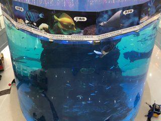 z płyt akrylowych o grubości od 20 do 500 mm dla nowoczesnych dużych ryb