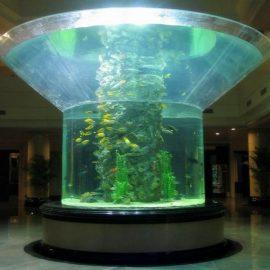pmma szklany akwarium pół cylinder butla z przezroczystego akwenu