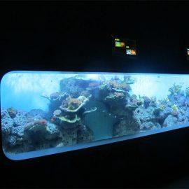 Sztuczne akrylowe cylindryczne przezroczyste akwarium rybne / okno widokowe
