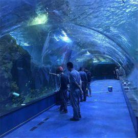 Projekt oceanarium tunelu akrylowego w akwariach publicznych