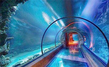 Nowoczesny tunel akrylowy długi tunel